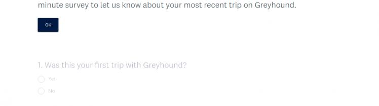 Post Trip Survey